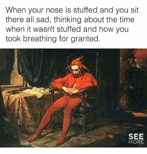 Memes, Time, and Sad: When your nose is stuffed and you sit  there all sad, thinking about the time  when it wasn't stuffed and how you  took breathing for granted.  SEE  MORE