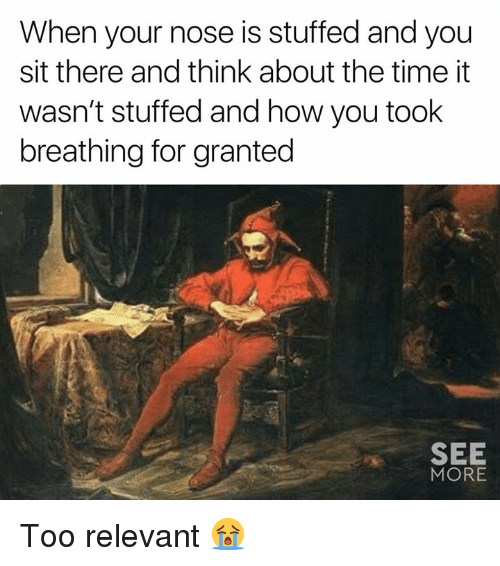 Dank, Time, and 🤖: When your nose is stuffed and you  sit there and think about the time it  wasn't stuffed and how you took  breathing for granted  SEE  MORE Too relevant 😭