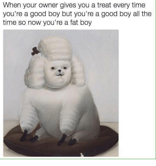 Dank, 🤖, and Fat Boys: When your owner gives you a treat every time  you're a good boy but you're a good boy al the  time so now you're a fat boy