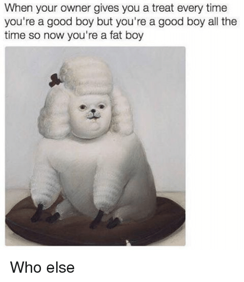 Dank Memes, Fat Boys, and Fat Boy: When your owner gives you a treat every time  you're a good boy but you're a good boy all the  time so now you're a fat boy Who else