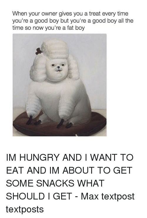 Memes, 🤖, and Fat Boys: When your owner gives you a treat every time  you're a good boy but you're a good boy all the  time so now you're a fat boy IM HUNGRY AND I WANT TO EAT AND IM ABOUT TO GET SOME SNACKS WHAT SHOULD I GET - Max textpost textposts