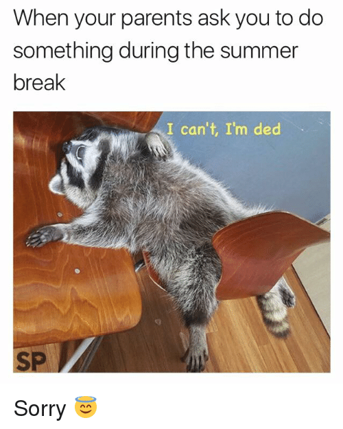 Parents, Sorry, and Summer: When your parents ask you to do  something during the summer  break  I can't, I'm ded  SP Sorry 😇