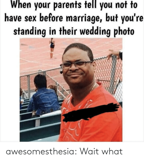 Marriage, Parents, and Sex: When your parents tell you not to  have sex before marriage, but you're  standing in their wedding photo awesomesthesia:  Wait what