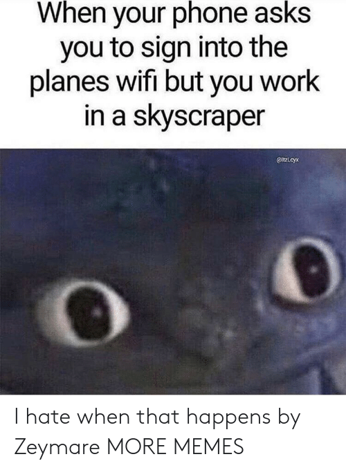 Dank, Memes, and Phone: When your phone asks  you to sign into the  planes wifi but you work  in a skyscraper  @tzLcyx I hate when that happens by Zeymare MORE MEMES