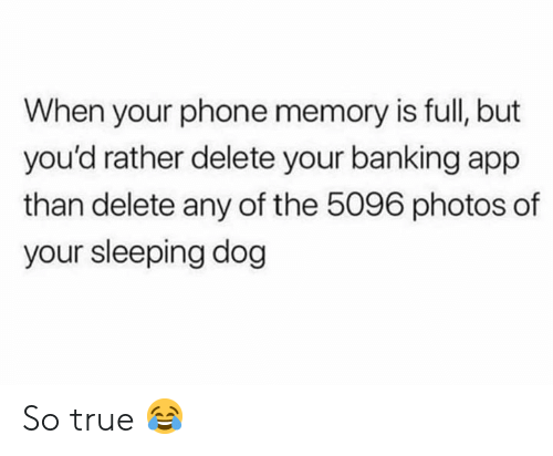 Memes, Phone, and True: When your phone memory is full, but  you'd rather delete your banking app  than delete any of the 5096 photos of  your sleeping dog So true 😂
