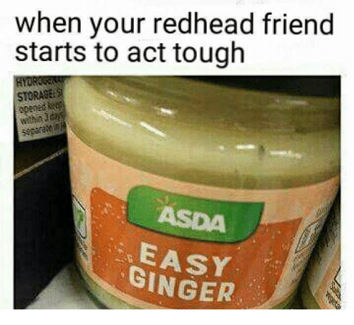 When Your Redhead Friend Starts to Act Tough STORAGE GINGER | Meme ...