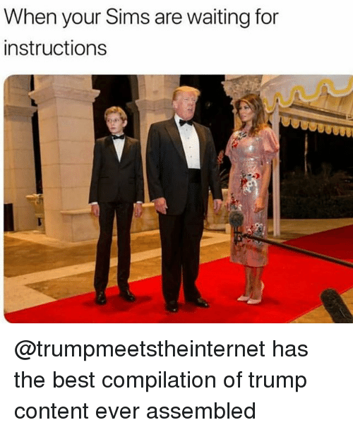 Memes, Best, and Sims: When your Sims are waiting for  instructions  it @trumpmeetstheinternet has the best compilation of trump content ever assembled