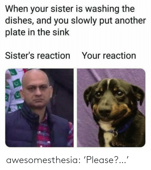Tumblr, Blog, and Another: When your sister is washing the  dishes, and you slowly put another  plate in the sink  Sister's reaction  Your reaction awesomesthesia:  'Please?…'