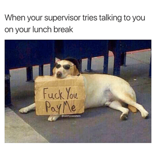 Fuck You, Break, and Fuck: When your supervisor tries talking to you  on your lunch break  Fuck You  PayMe  @comfysweaters