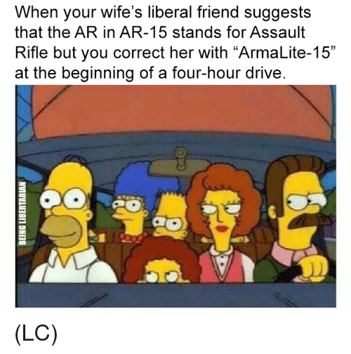 "Memes, Drive, and Ar 15: When your wife's liberal friend suggests  that the AR in AR-15 stands for Assault  Rifle but you correct her with ""ArmaLite-15""  at the beginning of a four-hour drive (LC)"