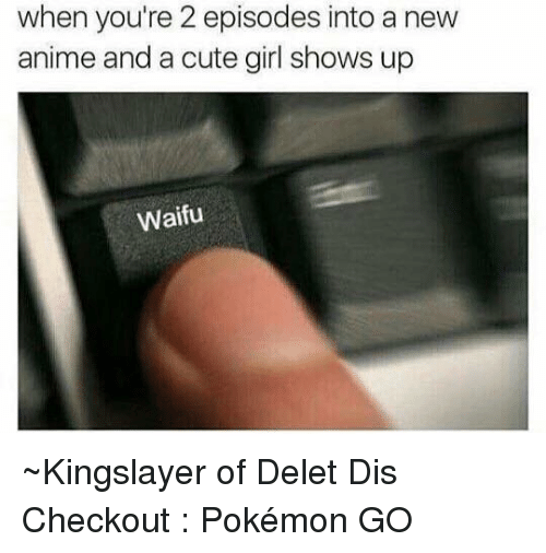 Animals, Cute, and Dank: when you're 2 episodes into a new  anime and a cute girl shows up  Waifu ~Kingslayer of Delet Dis  Checkout : Pokémon GO