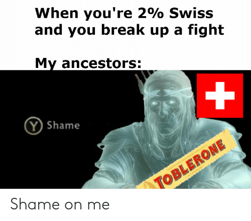 When You're 2% Swiss and You Break Up a Fight My Ancestors Y Shame