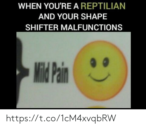 Shape, Youre, and  Shape Shifter: WHEN YOU'RE A REPTILIAN  AND YOUR SHAPE  SHIFTER MALFUNCTIONS https://t.co/1cM4xvqbRW