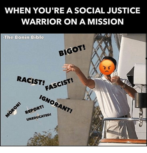 WHEN YOU'RE a SOCIAL JUSTICE WARRIOR ON a MISSION the ...