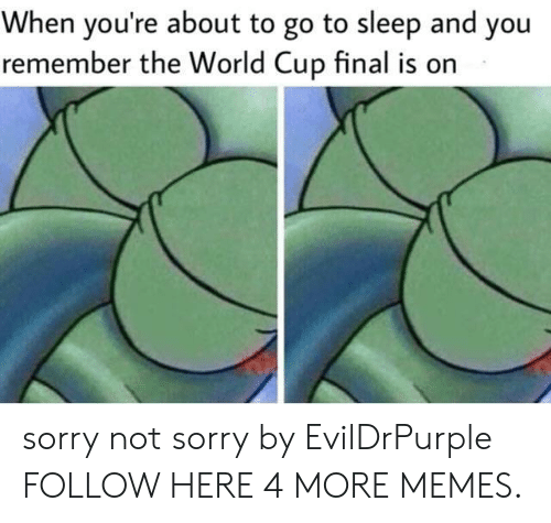 Dank, Go to Sleep, and Memes: When you're about to go to sleep and you  remember the World Cup final is on sorry not sorry by EvilDrPurple FOLLOW HERE 4 MORE MEMES.