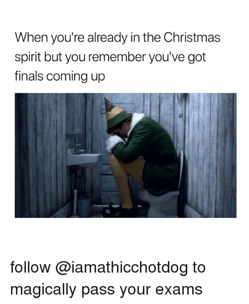Christmas, Finals, and Spirit: When you're already in the Christmas  spirit but you remember you've got  finals coming up follow @iamathicchotdog to magically pass your exams
