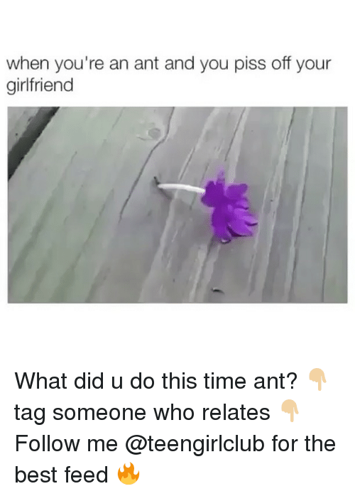 Girl, Ant, and The Best: when you're an ant and you piss off your  girlfriend What did u do this time ant? 👇🏼tag someone who relates 👇🏼 Follow me @teengirlclub for the best feed 🔥