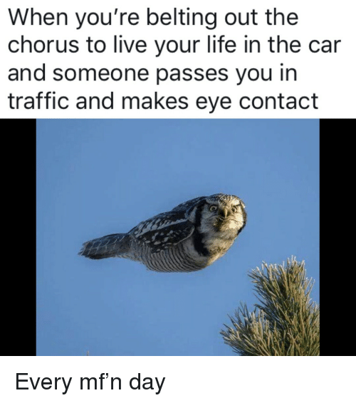 Life, Memes, and Traffic: When you're belting out the  chorus to live your life in the car  and someone passes vou in  traffic and makes eye contact Every mf'n day