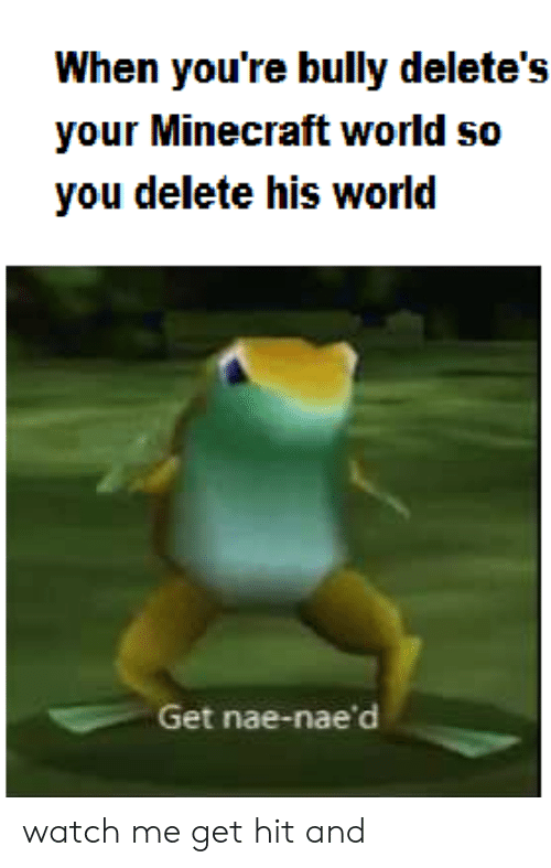When You're Bully Delete's Your Minecraft World So You Delete His