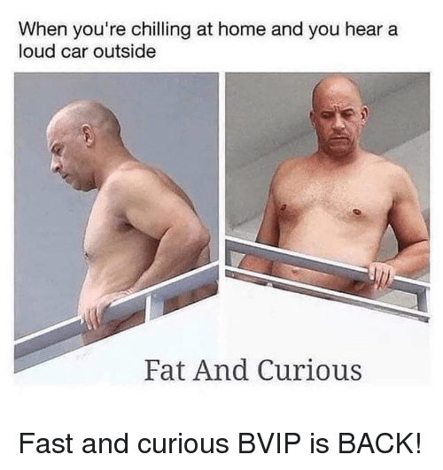 Memes, Home, and Fat: When you're chilling at home and you hear a  loud car outside  Fat And Curious Fast and curious BVIP is BACK!