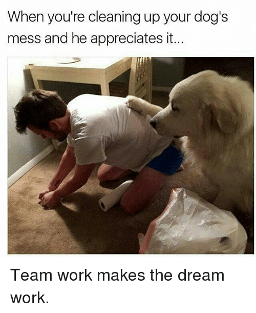25 Best Memes About Dream Work