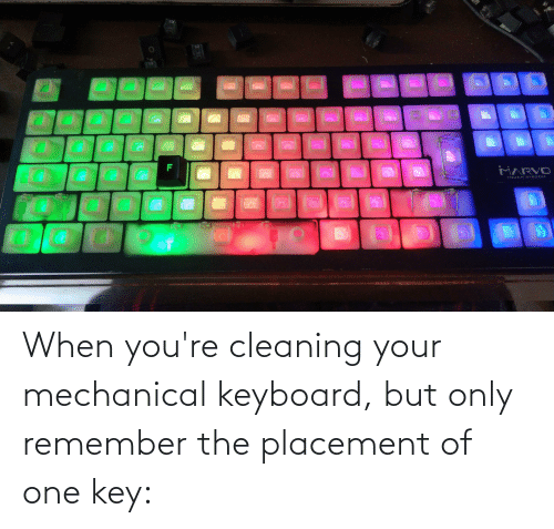 Reddit, Keyboard, and Mechanical Keyboard: When you're cleaning your mechanical keyboard, but only remember the placement of one key: