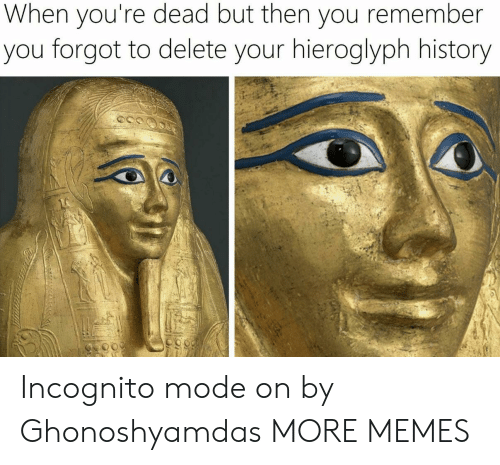 Dank, Memes, and Target: When you're dead but then you remember  you forgot to delete your hieroglyph history Incognito mode on by Ghonoshyamdas MORE MEMES