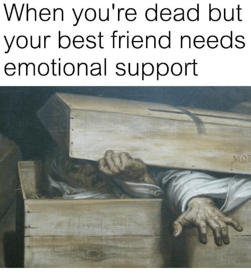 Best Friend, Best, and Friend: When you're dead but  your best friend needs  emotional support  LOP