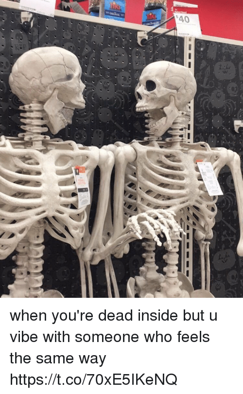 Funny, Who, and Inside: when you're dead inside but u vibe with someone who feels the same way https://t.co/70xE5IKeNQ