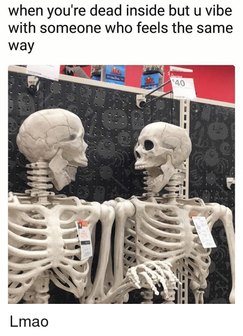 Funny, Lmao, and Who: when you're dead inside but u vibe  with someone who feels the same  way Lmao