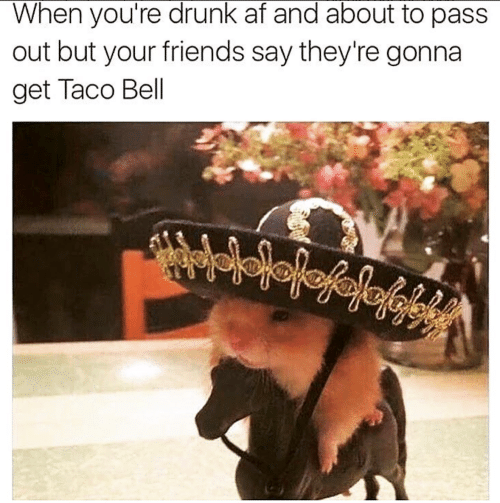Af, Drunk, and Friends: When you're drunk af and about to pas:s  out but your friends say they're gonna  get Taco Bell