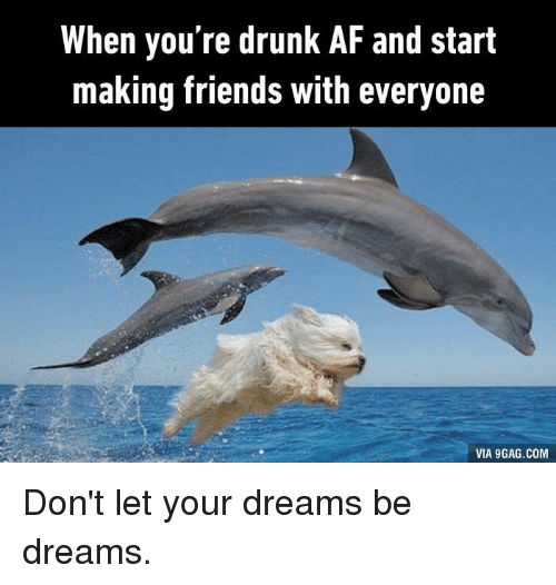 When You Drunk So You Just Make Friends Dog Dolphin