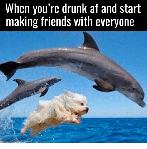 when youre drunk at and start making friends with everyone 5119363 ✅ 25 best memes about funny naruto memes funny naruto memes,Go Home Bessie You Re Drunk Meme
