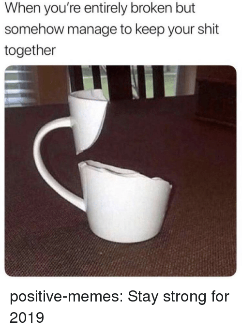 Memes, Shit, and Tumblr: When you're entirely broken but  somehow manage to keep your shit  together positive-memes:  Stay strong for 2019