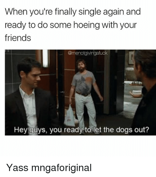 Girl Memes, Hey, and Yass: When you're finally single again and  ready to do some hoeing with your  friends  @menotgivingafuck  Hey guys, you ready to let the dogs out? Yass mngaforiginal