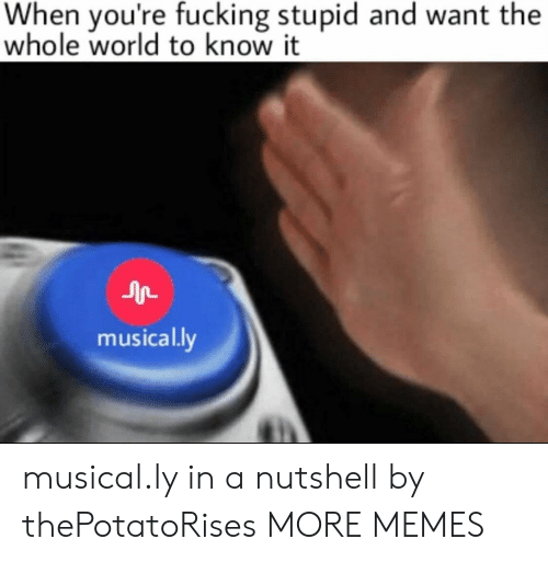 Dank, Fucking, and Memes: When you're fucking stupid and want the  whole world to know it  musically musical.ly in a nutshell by thePotatoRises MORE MEMES