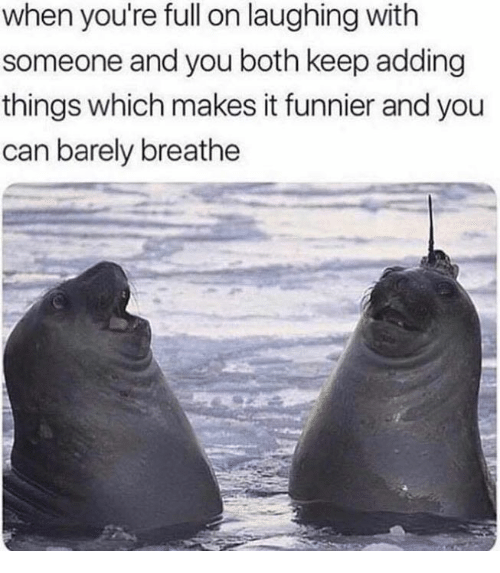Memes, 🤖, and Can: when you're full on laughing with  someone and you both keep adding  things which makes it funnier and you  can barely breathe