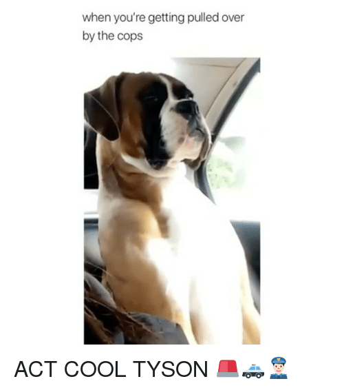 Memes, Cool, and 🤖: when you're getting pulled over  by the cops ACT COOL TYSON 🚨🚓👮🏻