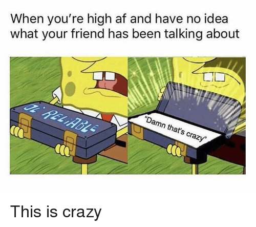 "Af, Crazy, and High AF: When you're high af and have no idea  what your friend has been talking about  ""Damn that's crazy"" This is crazy"