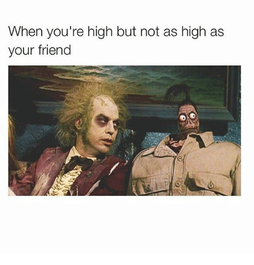 Funny Memes For When Your High : Funny youre high memes of on me when your