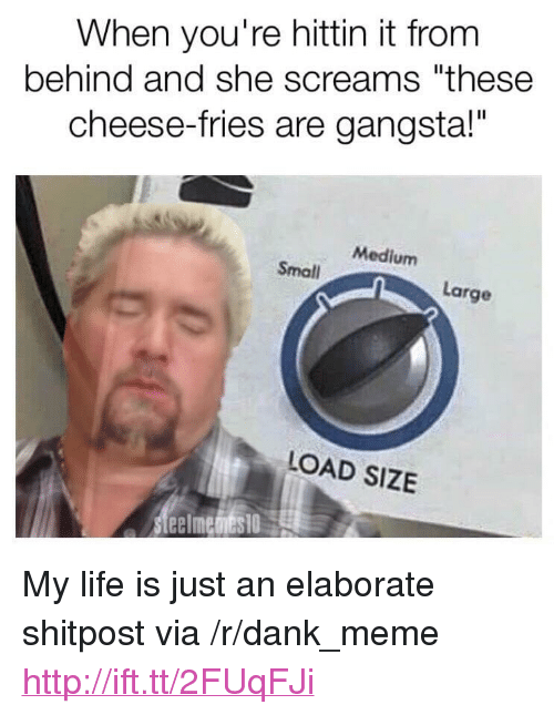 """Dank, Gangsta, and Life: When you're hittin it from  behind and she screams """"these  cheese-fries are gangsta!""""  Medium  Small  Large  LOAD SIZE <p>My life is just an elaborate shitpost via /r/dank_meme <a href=""""http://ift.tt/2FUqFJi"""">http://ift.tt/2FUqFJi</a></p>"""