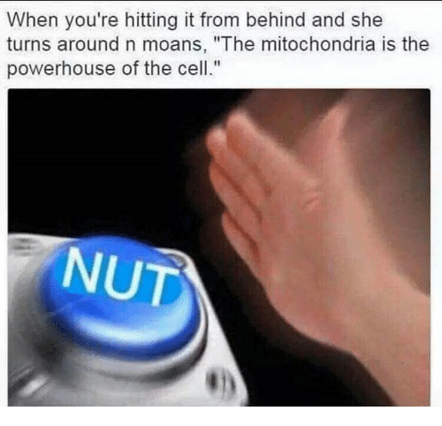 ✅ 25+ Best Memes About the Mitochondria Is the Powerhouse of the ...
