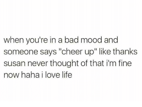 "Bad, Dank, and Life: when you're in a bad mood and  someone says ""cheer up"" like thanks  susan never thought of that i'm fine  now haha i love life"