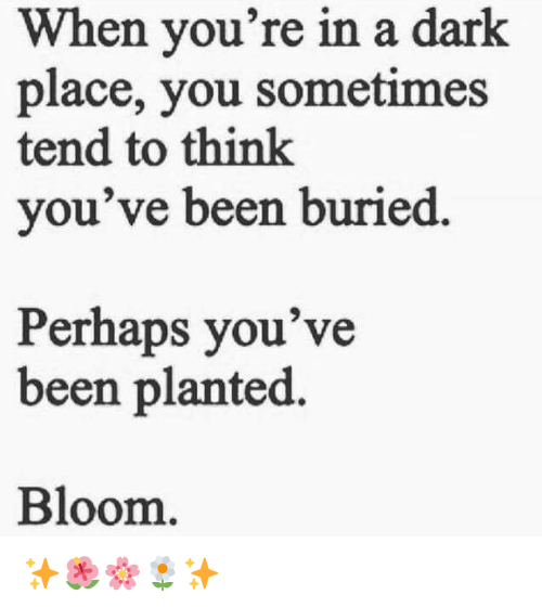 Been, Dark, and Buried: When you're in a dark  place, you sometimes  tend to think  you've been buried.  Perhaps you've  been planted.  Bloom <p>✨🌺🌸🌼✨</p>