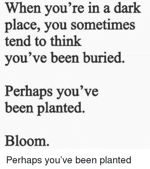 Been, Dark, and Buried: When you're in a dark  place, you sometimes  tend to think  you've been buried  Perhaps you've  been planted.  Bloom <p>Perhaps you've been planted</p>