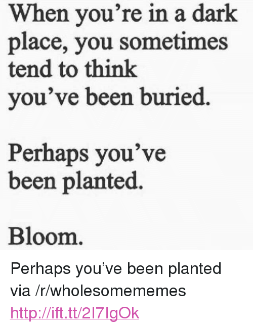 "Http, Been, and Dark: When you're in a dark  place, you sometimes  tend to think  you've been buried  Perhaps you've  been planted.  Bloom <p>Perhaps you've been planted via /r/wholesomememes <a href=""http://ift.tt/2I7IgOk"">http://ift.tt/2I7IgOk</a></p>"