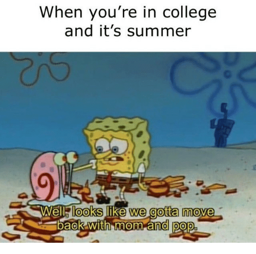 College, Summer, and Like: When you're in college  and it's summer  looks like we gotta mo
