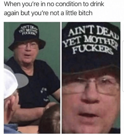 Bitch, Mot, and Youre: When you're in no condition to drink  again but you're not a little bitch  AINTD  VET MOT