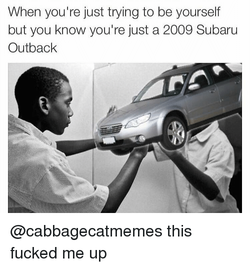 Outback, Dank Memes, and Subaru: When you're just trying to be yourself  but you know you're just a 2009 Subaru  Outback @cabbagecatmemes this fucked me up