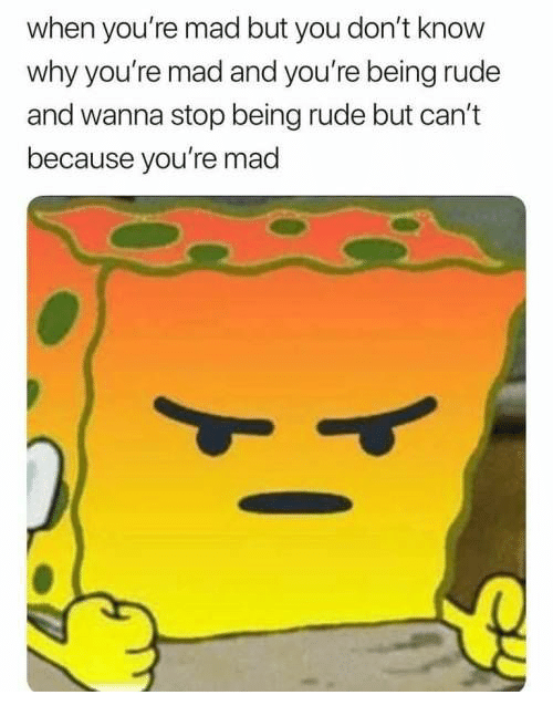 Rude, Mad, and Why: when you're mad but you don't know  why you're mad and you're being rude  and wanna stop being rude but can't  because you're mad